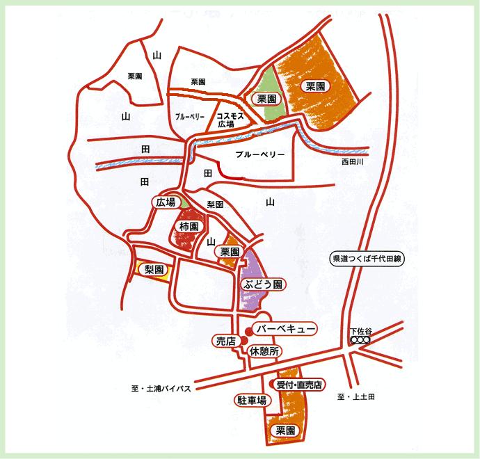 近隣施設紹介 地図